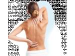 poduszka na bóle kręgosłupa szyii pleców ortopedyczna